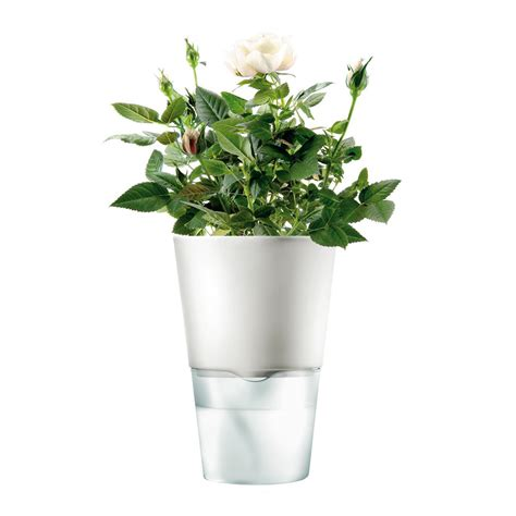 herb pots buy eva solo herb pot 11cm chalk white amara