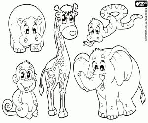 group of animals coloring page african wild animals coloring pages printable games