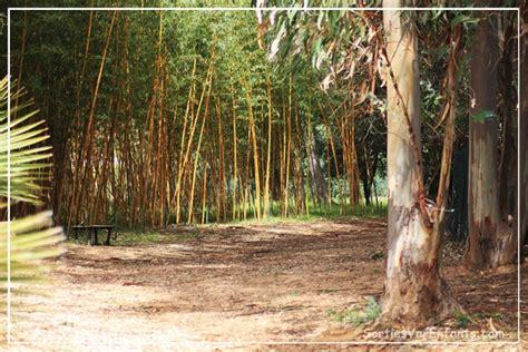 le jardin zoologique tropical de la londe esp 232 ces