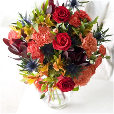flowers direct flowers direct coastal garden review compare prices buy