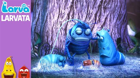 download film larva larvatar official larvatar mini series from animation larva