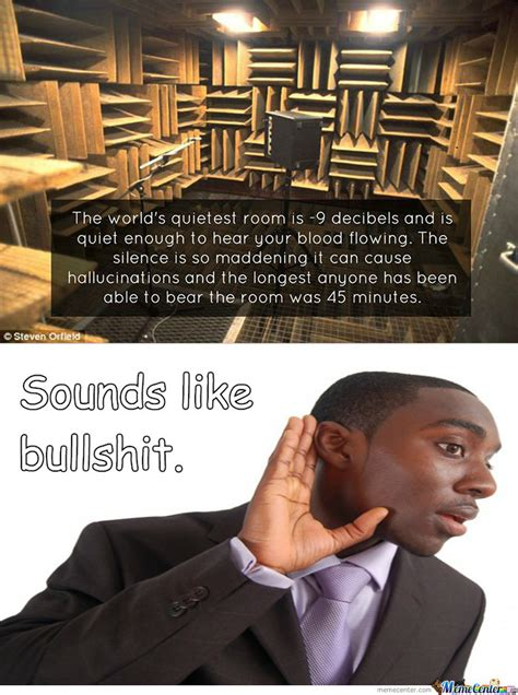 the worlds quietest room rmx the world s quietest room by mysteryguy meme center