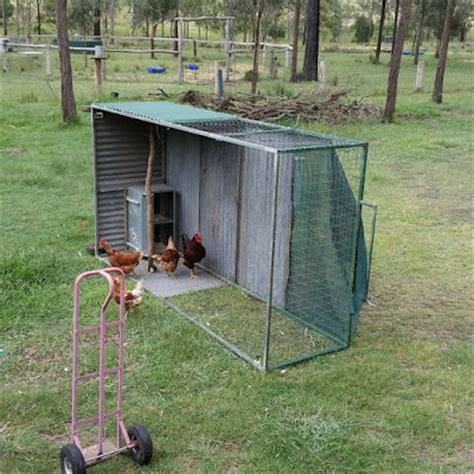 backyard chicken tractor backyard chickens and chicken tractors outfoxing the fox