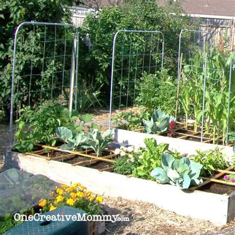 Diy Garden Trellis Ideas Gardening For Dummies Companion Planting Free Printable Onecreativemommy
