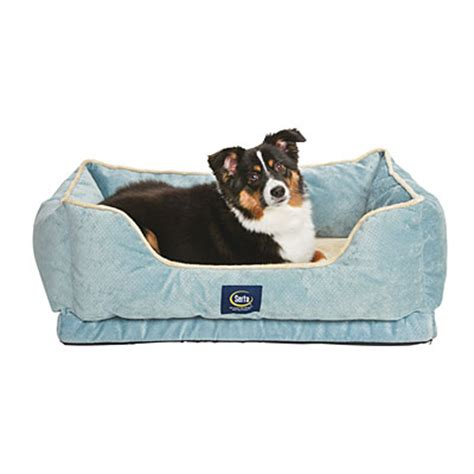 big lots dog beds view serta 174 orthopedic cuddler bolster pet bed deals at