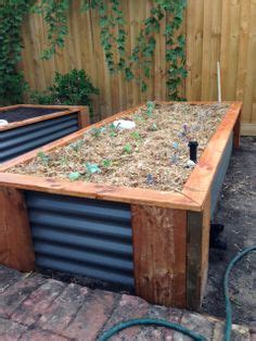worm beds wicking worm bed gardening pinterest worms beds and