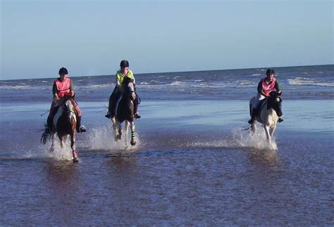activities in south lake district things to do in the lakes lake district activitites horse riding horse riding holidays