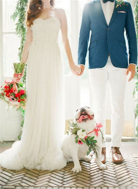 Wedding For Your Beloved Pet by Best 25 Wedding Ideas On Engagement