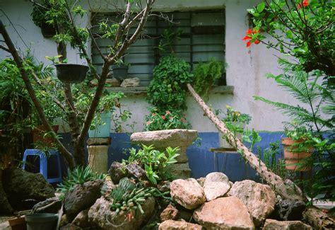 mexican garden mexican garden 1 flickr photo
