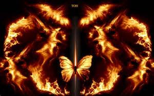 Fireplaces Outdoor Wood Burning - fire butterfly fire butterfly by 1and1isme fire pinterest butterfly
