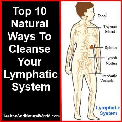 Best Way To Detox Your System From 17 best images about lymphatic issues on lymph