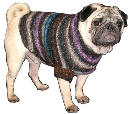pugs clothing pug clothes luxe pug sweaters pugs