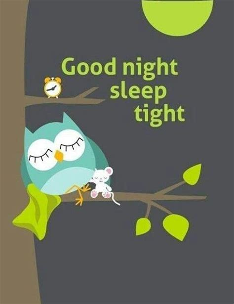 libro goodnight sleep tight 140 best images about quot sweet dreams quot on