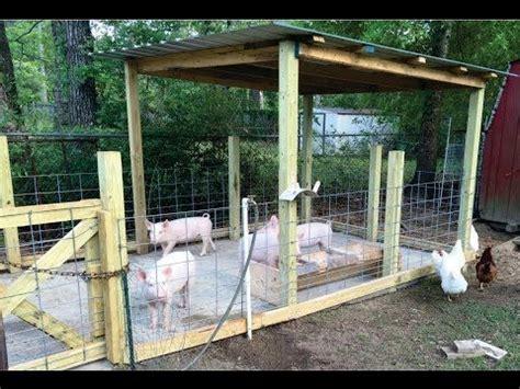 backyard pig farming how to build a pig pen design organic hogs youtube