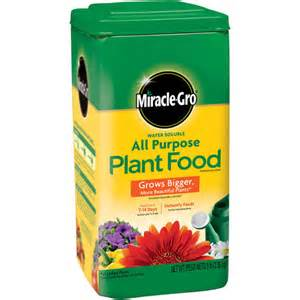 best flower food miracle gro water soluble all purpose plant food 5 lbs