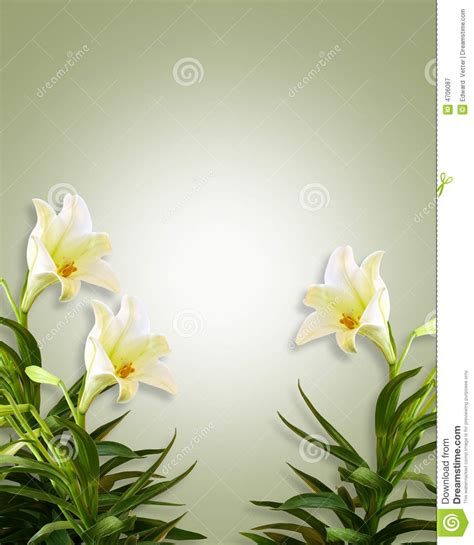 banche immagini gratis white lilies floral easter background royalty free stock