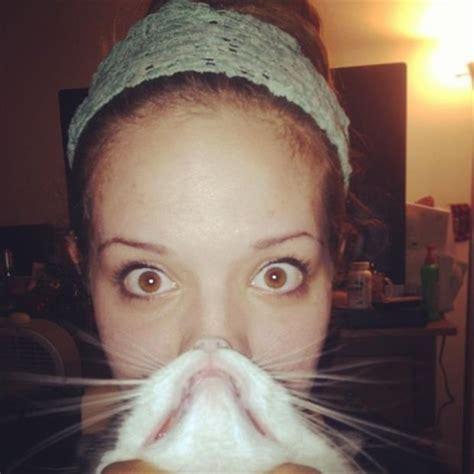 Cat Beard Meme - cat beard memes 3 dump a day