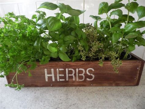 window box herb garden herb window box vintage crate design simply cottage