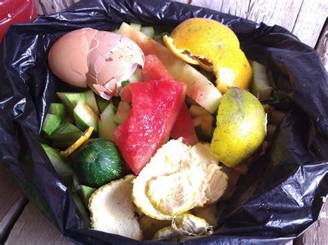 membuat zpt perangsang buah cara membuat nutrisi perangsang buah mol dengan limbah