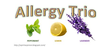 essential oils for allergies april 2015