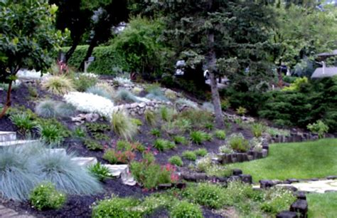 Design For Hillside Landscaping Ideas Backyard Design Ideas On A Hill Izvipi