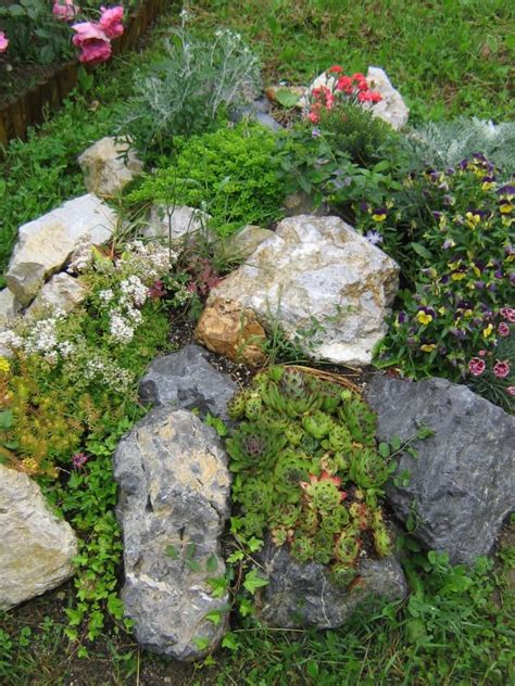 Pictures Of Small Rock Gardens 1000 Images About Ground Cover Ideas On Garden Paths Paths And Paving Stones