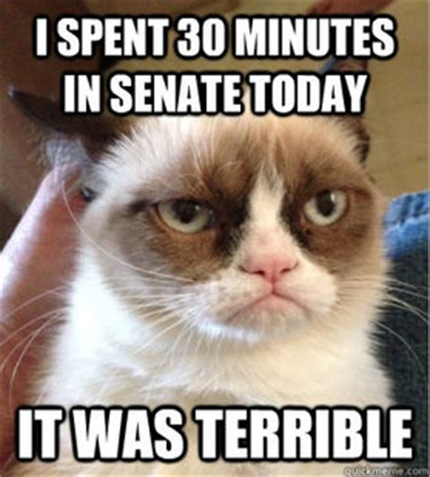 Make Your Own Grumpy Cat Meme - add your own caption use our meme generator to create your