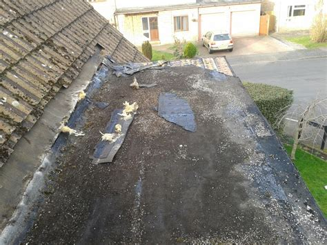 Dormer Leaks Warm Roof And Grp Installed On Dormer Synergy Roofing