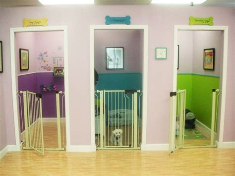 pet bedroom ideas best 25 pet rooms ideas on pinterest dog rooms puppy