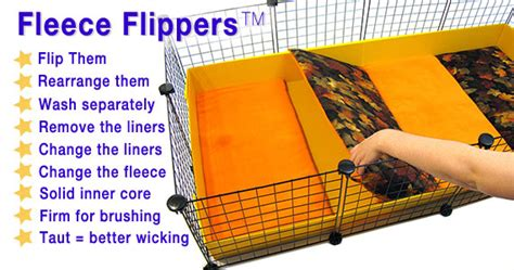 cheap guinea pig bedding excellent pixie and zinneas new girly cage guinea pig photos intended for cheap