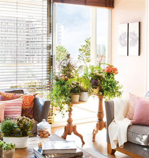 plantas de interior para salon c 243 mo decorar con plantas