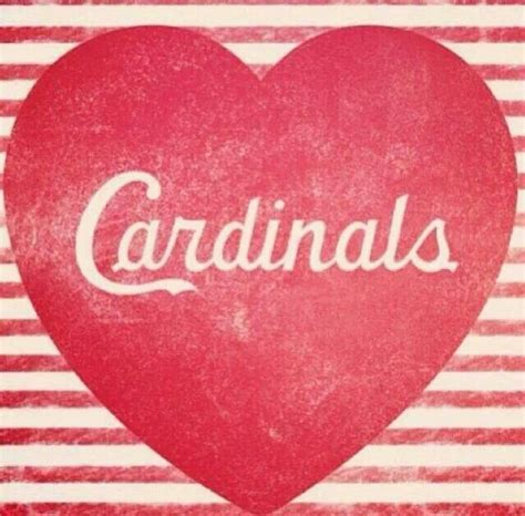 st louis valentines day 17 best images about st louis cardinals on
