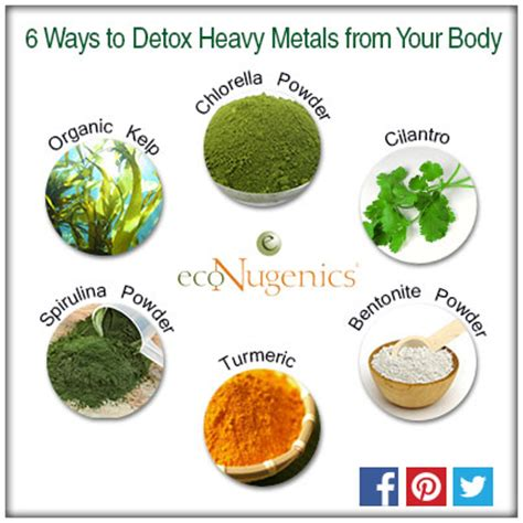 Best Foods For Detoxing Heavy Metals by Infographic 15 Foods That Naturally Detox And Cleanse