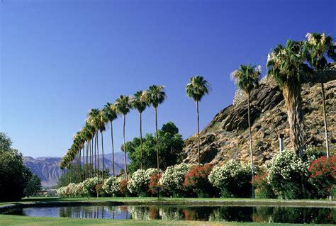 California Palm tourism palm springs california