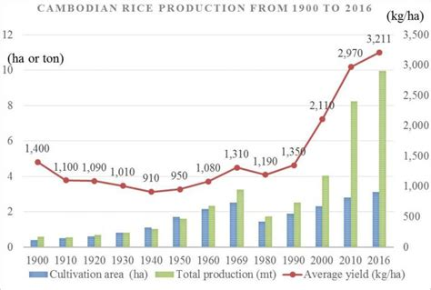 Agropages Overview Of The Cambodian Rice Market