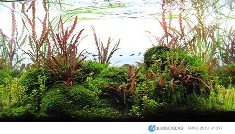 aquarium für die wand teppich f 252 r wohnzimmer grau