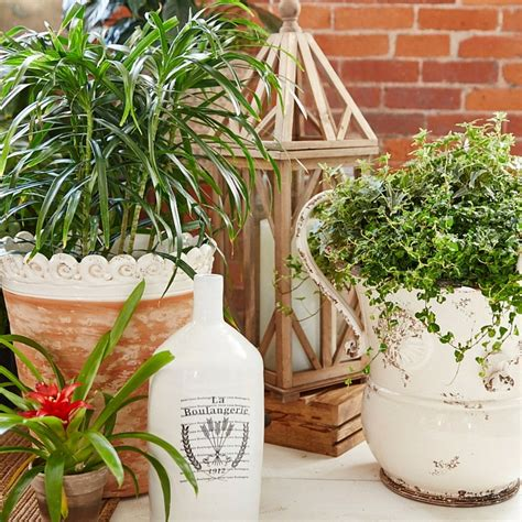 European Planters by Beautiful Flowers Patio Homegoods Project Four