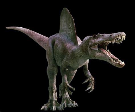 los 10 dinosaurios mas grandes que existieron ecolog 237 a sciencuriosities los 10 grandes dinosaurios carn 237 voros de todos los tiempos
