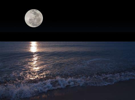 5 Things to do at Night in Siesta Key, FL   Tropical Beach