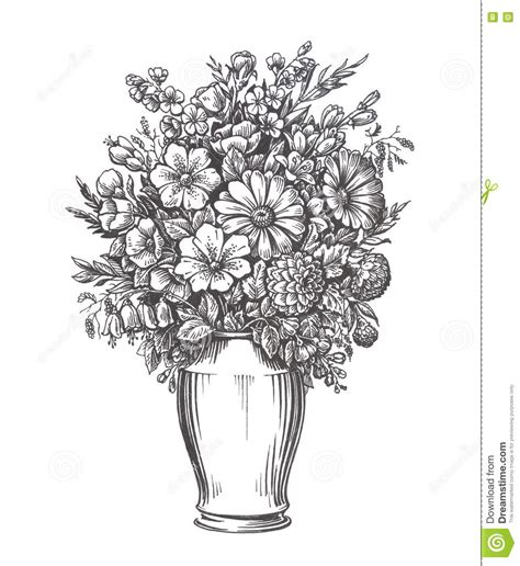 Vase Illustration by Vintage Vase With Flowers Sketch Illustration