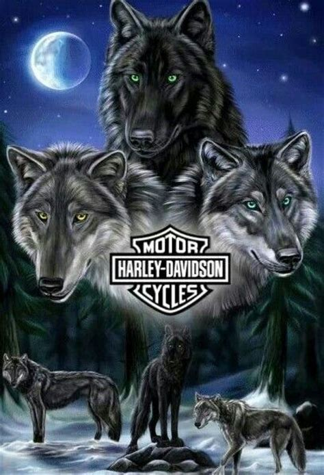 harley wolf for two 17 best images about tattoos on pinterest quad wolf
