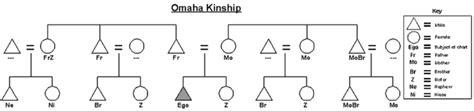 kinship pattern definition omaha kinship wikis the full wiki