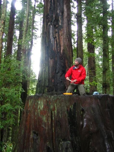 the redwood curtain 17 best ideas about disc golf courses on pinterest disc