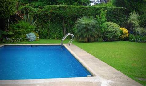 backyard pool pictures backyard pools photos here s a rectangular backyard ingro