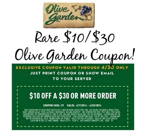 Olive Garden Lunch Coupons by Best 25 Olive Garden Coupons Ideas On Olive
