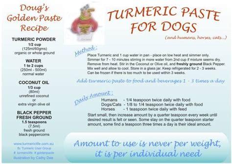 golden paste for dogs turmeric golden paste horses sarcoids doug veterinarian turmeric