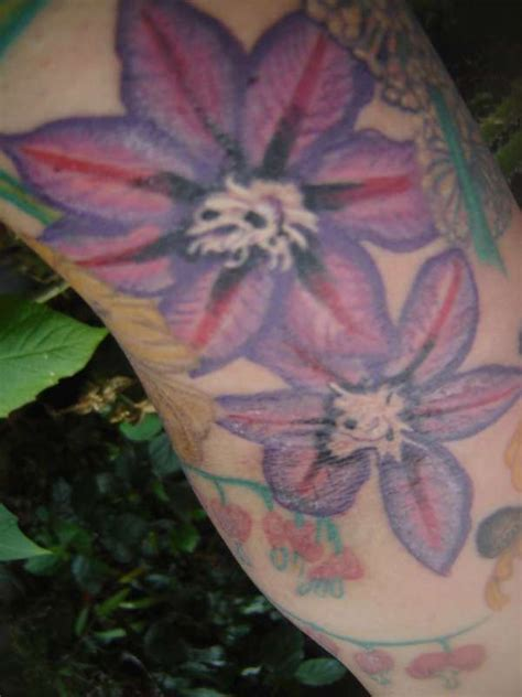 clematis tattoo designs purple clematis www pixshark images