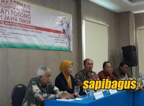 Bibit Sapi Potong Jawa Timur inseminasi buatan alternatif menggunakan cair