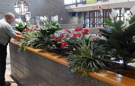 Interior Plantscapes Installation Maintenance And Management by Installation Maintenance