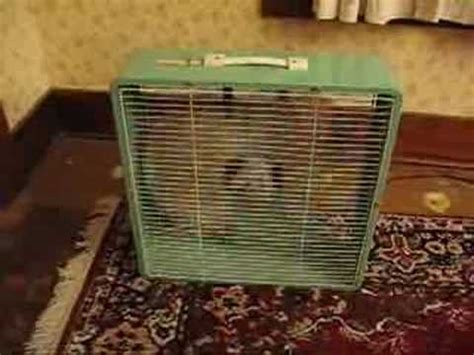 Box Fan Green Tara vintage box fan mcgraw edison quot eskimo quot